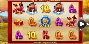 Maak samen met je viervoeter kans op geld in Wonder Hounds!