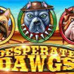 Yggdrasil en Reflex Gaming stellen teleur met nieuwe gokkast Desperate Dawgs